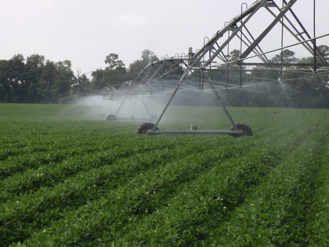 Water  - Spray Field